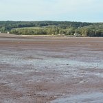 view of New Minas basin--low tide