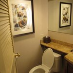 Toilet that is not too low to the ground
