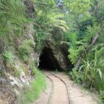 Photo of Karangahake Gorge