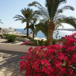 Photo de Moevenpick Resort Sharm El Sheikh