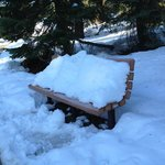 bench with snow on walk from room to lodge