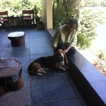 With Jingles in the verandah