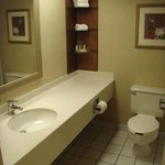 Holiday Inn Conference Center Lehigh Valley Foto