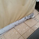 Mold on cabanas