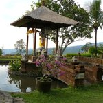 Foto di Puri Lumbung Cottages