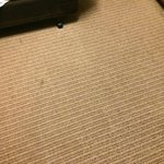 Dirty carpets in several areas in room