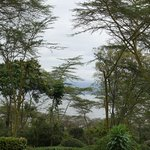 Foto de Sarova Lion Hill Game Lodge