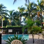 Φωτογραφία: Hampton Inn & Suites Fort Myers Beach / Sanibel Gateway
