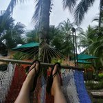 lounging in the onsite hammock