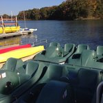 Have some Fun with a PaddleBoat!