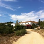 The road leading up to the cortijo