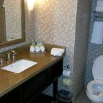 Foto de Holiday Inn Express Hotel & Suites Mobile/Saraland