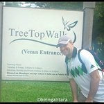 Photo de MacRitchie Nature Trail