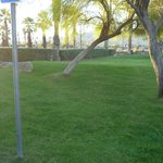 The lawn in front of ESA, Palm Springs Airport