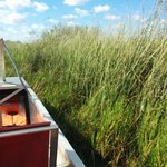 Photo de Coopertown Airboats