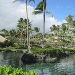 Photo de Grand Hyatt Kauai Resort and Spa