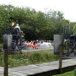 Foto de Everglades National Park Airboats Tour - Miami Japan Tours