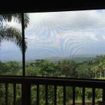 Daytime view from the screened lanai adjacent to our room