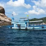 Photo of Discovery Dive Centre