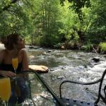 Mimosas by the creek