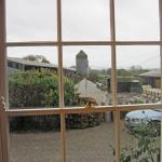 View of the working Dairy Farm from the dining room.