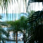 Photo de Hotel Calheta Beach Resort Madeira