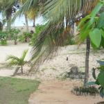 Photo de Jamelah Beach Guest House