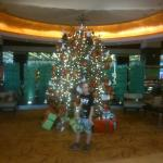My son with the Jens newly erected tree.