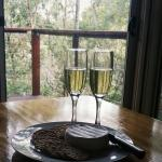 Maleny Brie - perfect treat to take back to your hotel :)