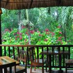 Foto Table Rock Jungle Lodge
