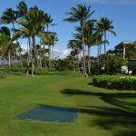 View of lawn between the pools and beach