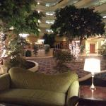 Bild från Houston Marriott South at Hobby Airport