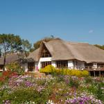 Ngorongoro Farm House - Main building