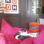 Photo de Hostel Room Rotterdam