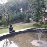 The Windflower Resort & Spa, Vythiri Foto