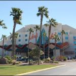 Welcome to the Avi Resort & Casino!