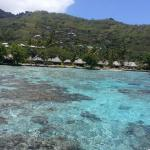 ภาพถ่ายของ Sofitel Moorea Ia Ora Beach Resort