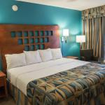 The king suite at Rodeway Inn and Suites Fort Lauderdale