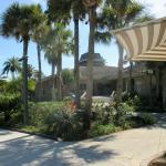 Saddlebrook Resort Tampa Foto