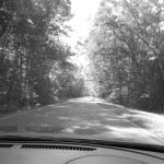 Driving on the Natchez Trace