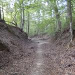 The Sunken Trace - the original trail where settlers and Native Americans have walked before us