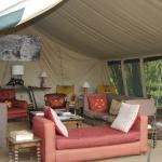 Reading & Lounge tent