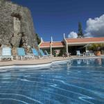 Free Form Pool with Sugar Mill
