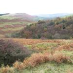 View on the way to Jagger's Clough, a walking trail that leads from the youth hostel.