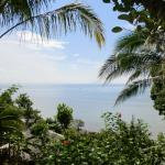 Φωτογραφία: Railay Garden View Resort