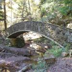One of the many bridges along the trails.