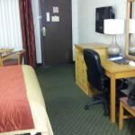 Foto de Comfort Inn Near Old Town Pasadena - Eagle Rock
