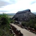 Φωτογραφία: Manyara Wildlife Safari Camp