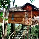 Tree House Tranquil Resort,More Detail:
