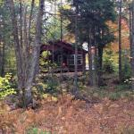 Foto de Mersey River Chalets and Nature Retreat